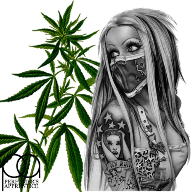 Купить ароматизатор марихуаны истории марихуана